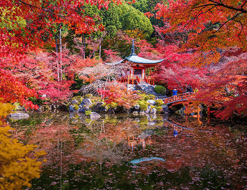 1024x787-0flechazos-news-sitios-bonitos-mundo-templo-daigoji-japon